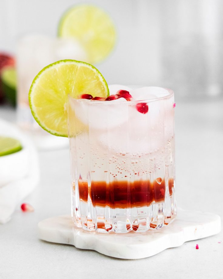 Pomegranate Gin & Tonic Cocktail